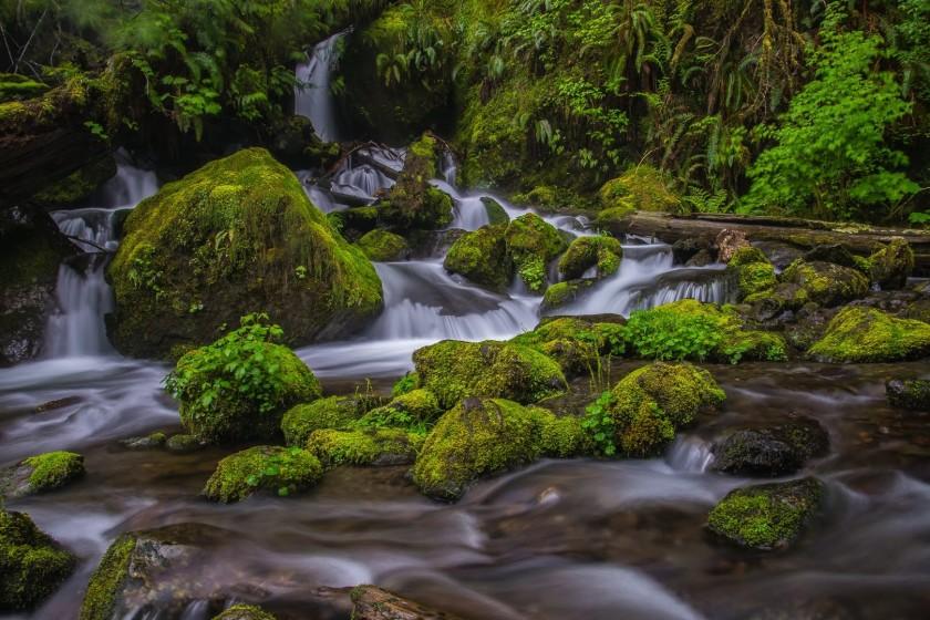 merriman-creek-1
