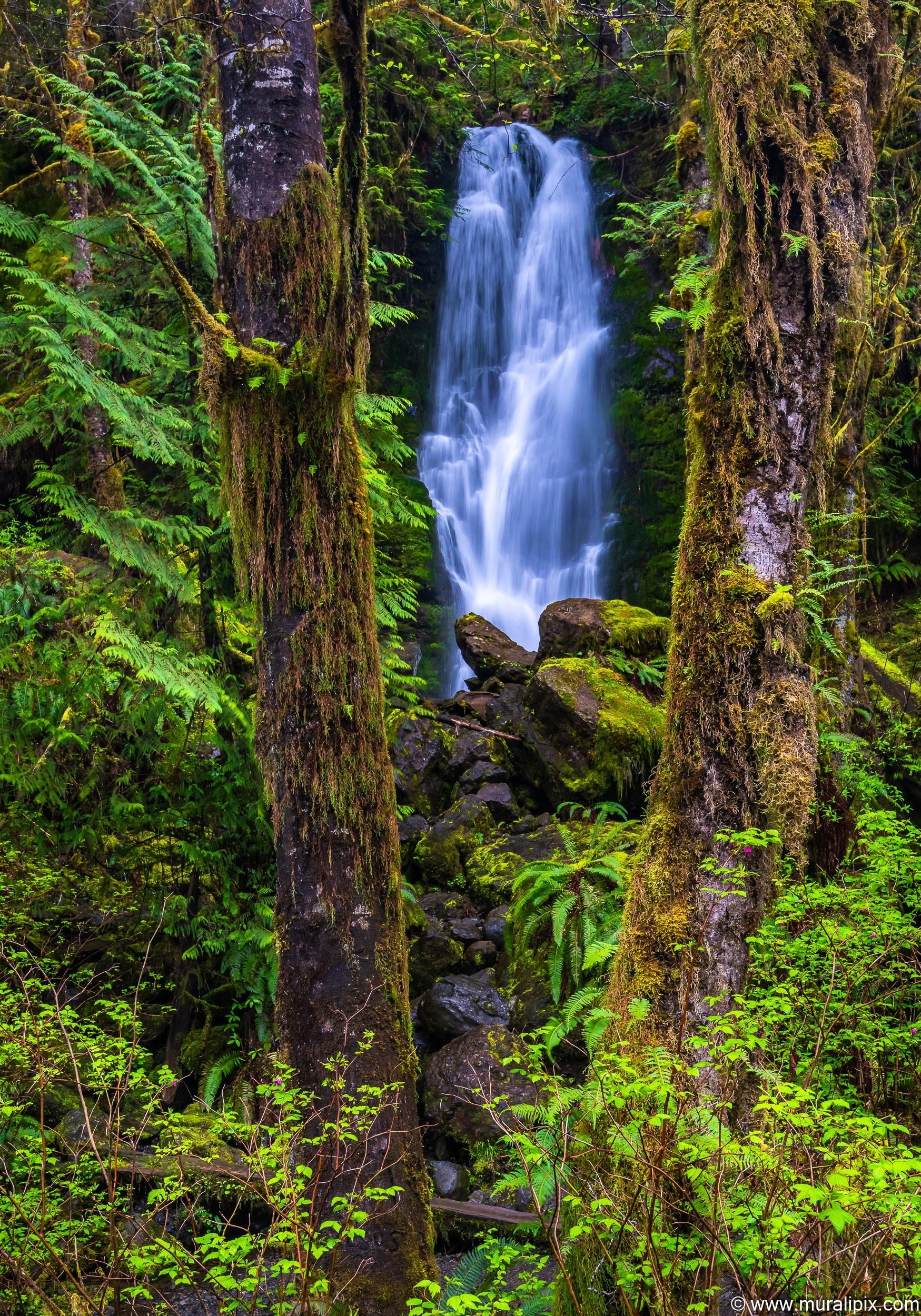 merriman-creek-falls-2-2019