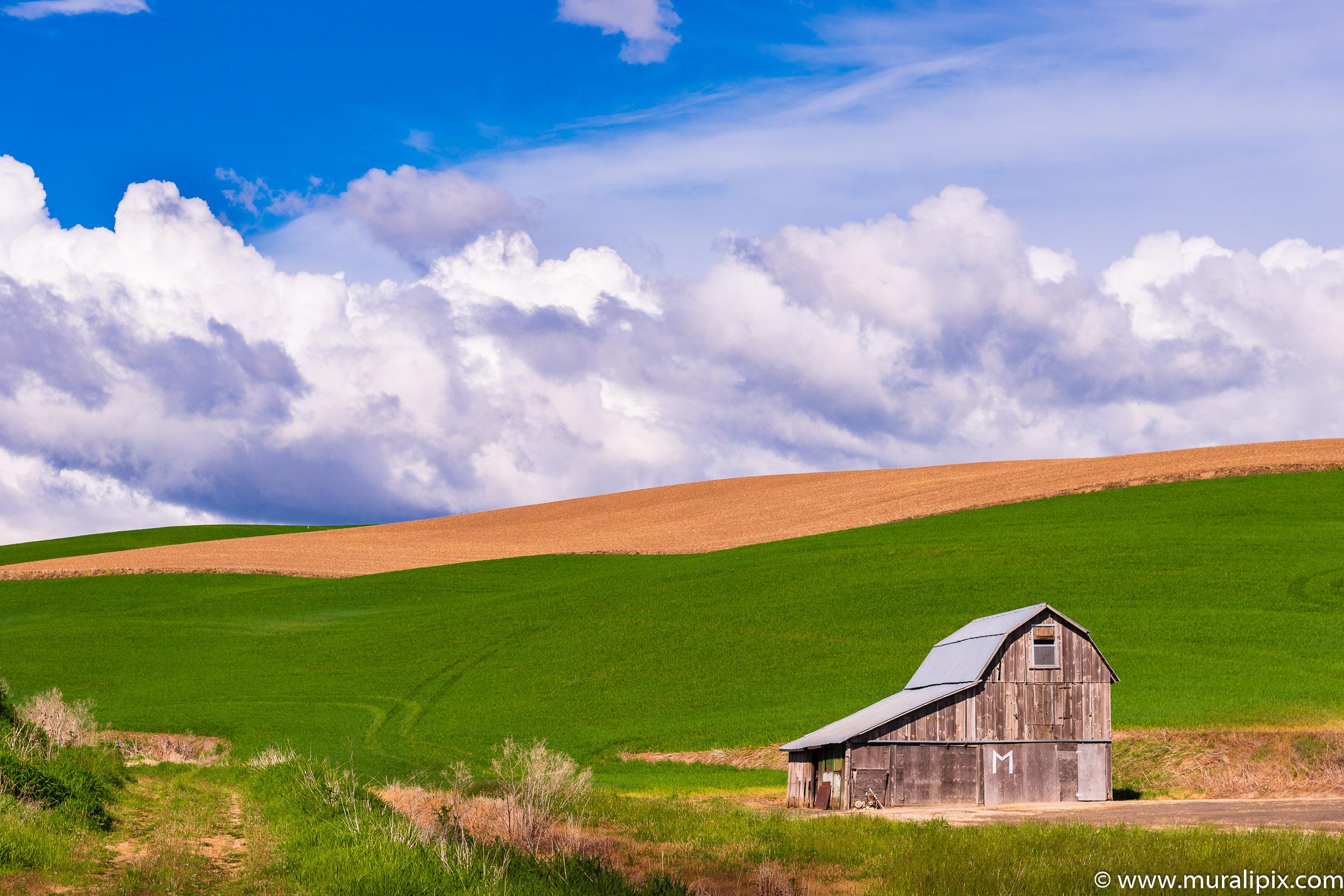 Colfax Grey Barn 02