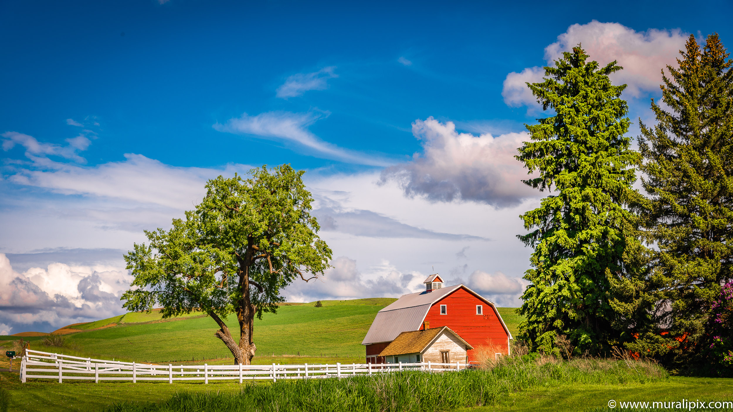 Colfax Red Barn
