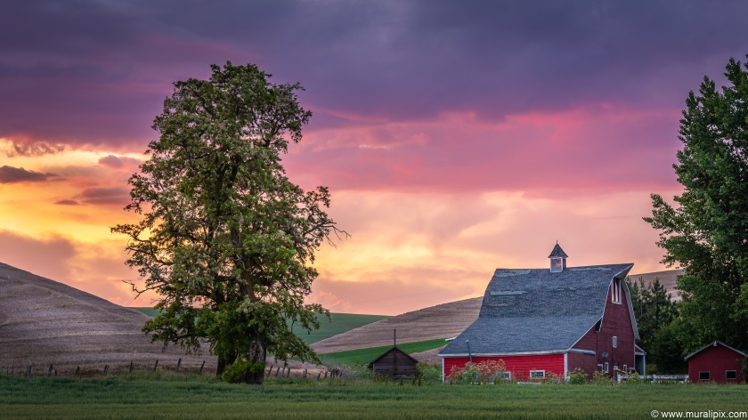 Colfax - Red Barn @ Sunset