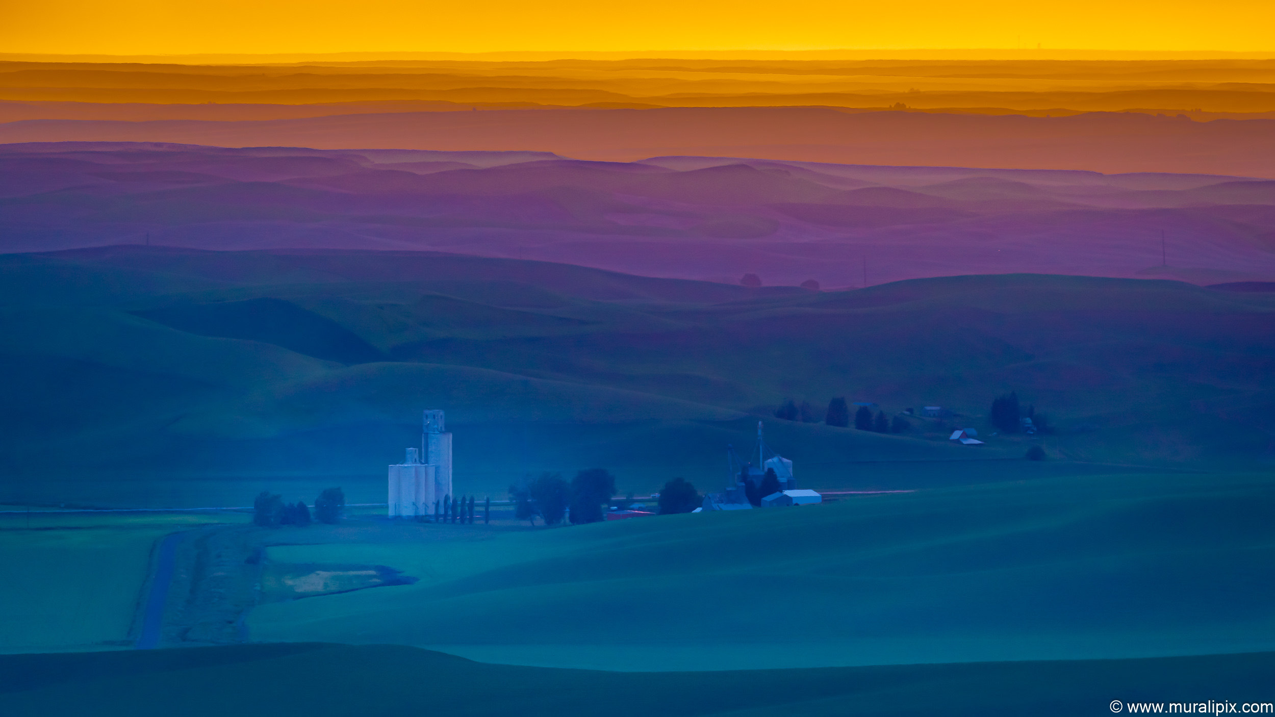 Palouse from Steptoe Butte 05